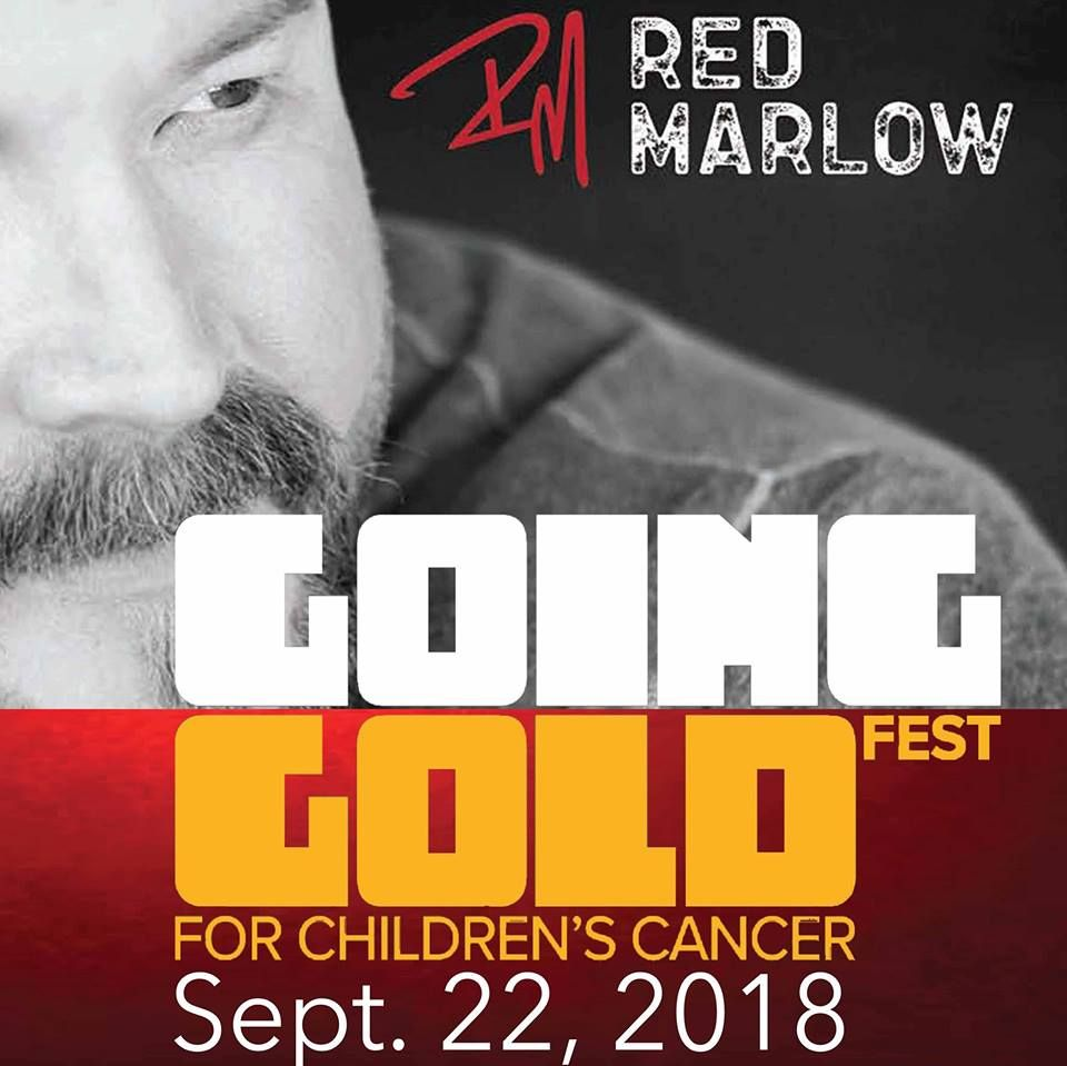 Going Gold Fest For Children's Cancer 2018