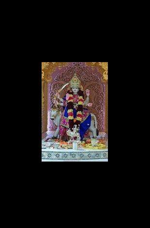 Shree Umiya Mataji's Pratham Patotsav