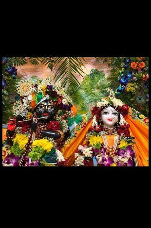 Sri Krishna Janmastami 2019