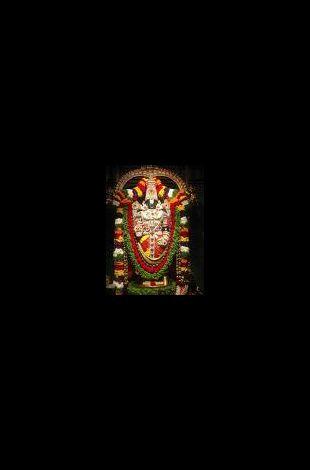 Annakoot for Lord Balaji